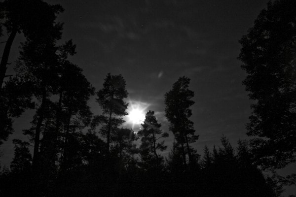 Luna Fotografica