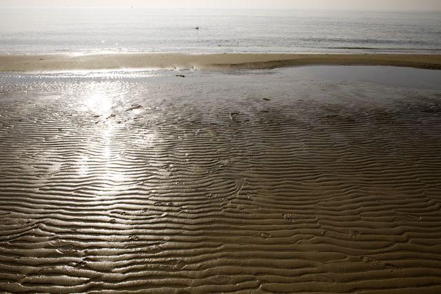 Zon in het zilte water