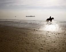BETIFO: Strand