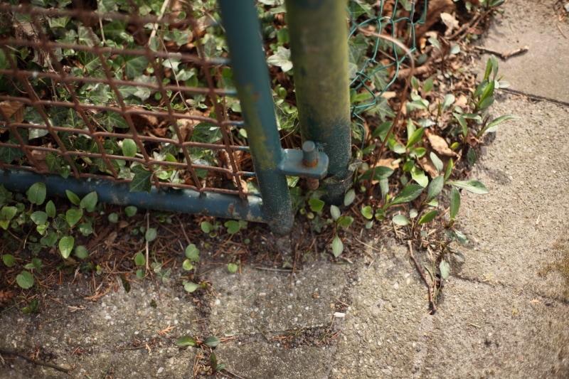 Hoek van het hek